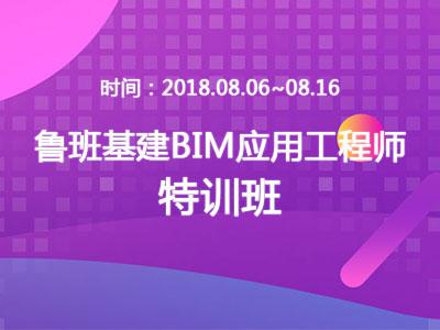 鲁班基建BIM应用工程师特训班