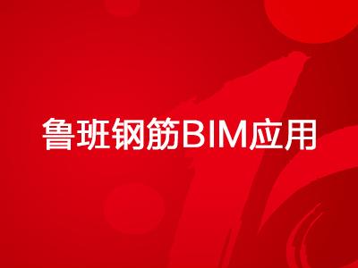 鲁班钢筋BIM应用