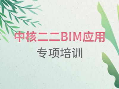 中核二二BIM应用专项培训