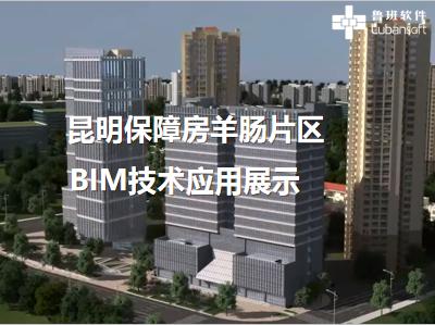 昆明保障房羊肠片区:BIM技术应用展示
