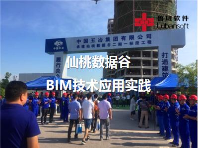 仙桃数据谷:BIM技术应用实践