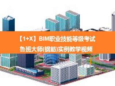 【1+X】BIM职业技能等级考试——鲁班大师(钢筋)实例教学视频