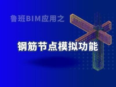 鲁班BIM应用之钢筋节点模拟功能