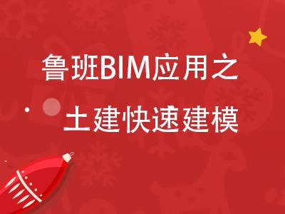 鲁班BIM应用之土建快速建模