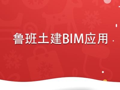 鲁班土建BIM应用