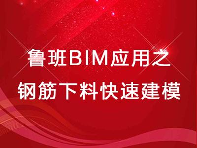 鲁班BIM应用之钢筋下料快速建模