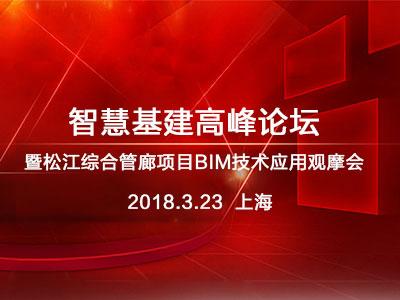 智慧基建高峰论坛暨松江综合管廊项目BIM技术应用观摩会